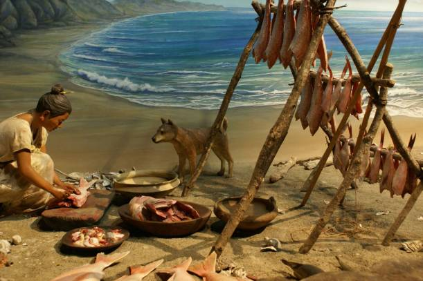 Mesolithic hunter-gatherers eating a meat, grain-free diet had much healthier mouths than we have - almost no cavities or gum disease